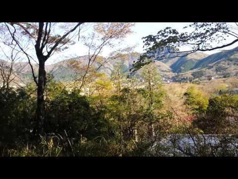 箱根仙石原温泉「仙郷楼」の露天風呂