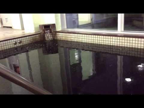 日本一の黒湯! 東北温泉の女湯を拝見【ニッポン旅マガジン】