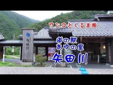 『道の駅 あゆの里矢田川』ワンコとくるま旅