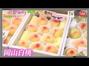 【旅】岡山県で絶景の宝庫&とろける柔らか白桃2019情報