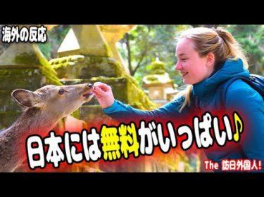 訪日外国人「なんと水もトイレも無料だった♪」日本で衝撃的だったことは?海外の反応