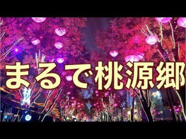 中国古都・西安で3泊4日の旅!始皇帝の眠る兵馬俑、回民街で食べ歩き三昧【Xi'anVLOG】