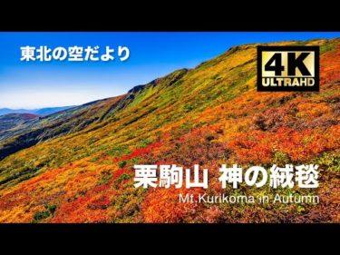 [ドローン空撮] 栗駒山 〜東北一の紅葉と神の絨毯〜 DJI Mavic2 Pro [東北の空だより 紅葉シリーズ 4K 60fps 高画質]
